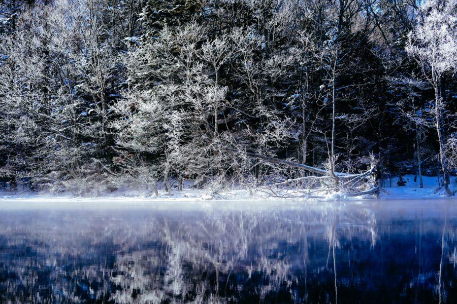 冬のブラックバスの釣り方・ポイント・おすすめルアー(12月、1月、2月)